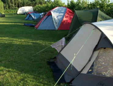 Camping Hoeve Axel